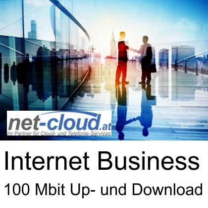 Anbieter: net-cloud Service: net-cloud 100